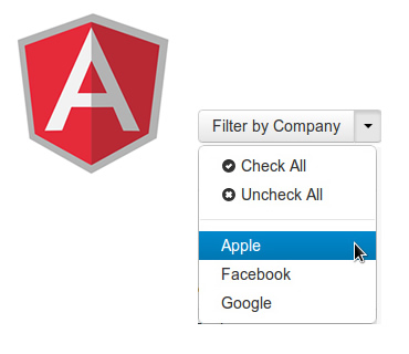 writing custom filter angularjs Angularjs is what html would have been, had it been designed for building web-apps declarative templates with data-binding, mvc, dependency injection.